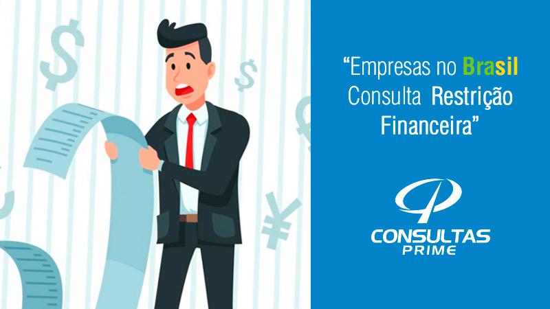 Empresas no Brasil Consulta Restrição Financeira